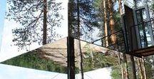 Treehouse ● Dom na drzewie