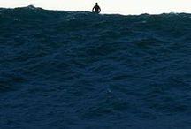 Take me to the Sea.!