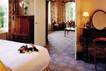 Stay @ Chateau Yering