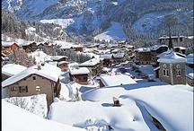 Pralognan La Vanoise / Village station au cœur du Parc National de la Vanoise, membre du réseau Alpine Pearls, présentation générale