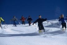 Raquette à neige à Pralognan la Vanoise / Profitez de l'environnement exceptionnel de Pralognan La Vanoise pour une sortie raquette avec des accompagnateurs en montagne