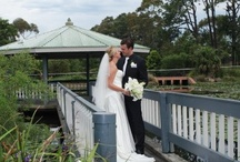 Wollongong Botanical Garden Weddings