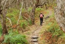 Great Walks of Australia