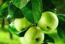verde mela ... prato ...smeraldo ....
