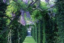 Jardim (Garden) e Paisagismo