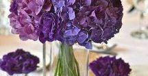 Hääkukat - violetti