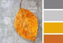 Kleurenpalet   Color Palette