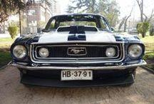 Mustangs  / Imágenes de Mustang, diferentes años