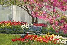 Blogs We Love / Here are #garden #blogs that we love and we think you may too!