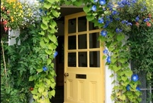 Doors, Gates, Windows and More / Doors, Gates, Windows etc. are the openings to our hearts and souls and tell us so much about the person who has chosen to live there.