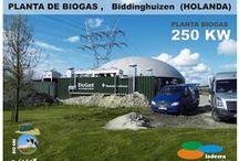 INDEREN BIOGAS / Instalacion de plantas de BIOGAS