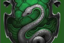 Slitherin!! / Or perhaps in Slitherin, you'll make your real friends, those cunning folk use any means to achieve their ends