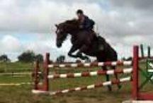 Jazda Konna / Moja tablica przedstawia różne możliwości spędzenia czasu o koniach.Obejmuje zarówno zdjęcia z skoków przez przeszkody , jazdę w terenie oraz ujeżdżanie koni.