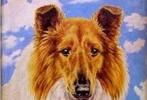 Best Dog Stories -- Selected by Hazel Mitchell (and Toby)