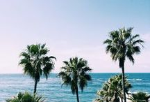 California Dreaming / All things Californian!
