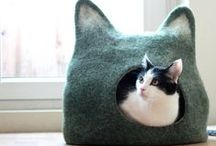Things for cats
