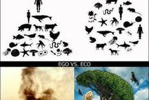 environmental inspiration / these are images that change how we perceive our earth as something to consume and destroy.