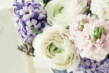flowers I <3