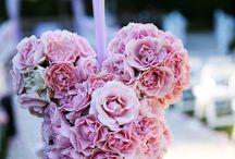 Floral / by Ezequiel Martinez