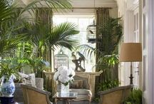 French inspired home / City home and country home / by Patricia Mann