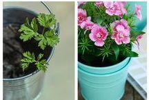 ComexTips / Te mostramos los mejores tips para darle ese toque de decoración especial a tu hogar.