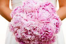 Japanese/Origami Inspired Wedding / Japan, Origami inspired Catholic church wedding on May 12, 2015 ☺ / by Sarah Moral