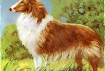 vintage dog illustrations / Vintage dog illustrations curated by American in Paris watercolor illustrator, Jessie Kanelos Weiner. Antique dog art. Watercolor. American in Paris. Lassie Come Home. Griffon Korthals.