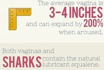 Sex Stats & Facts