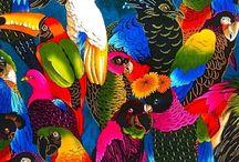 jungle jungle / Prints, patterns & inspirations #tropical #jungle