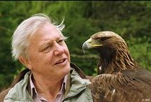 Sir David Attenborough / by Mel