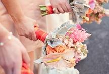 Wedding Stuff / by Sarah Ternes
