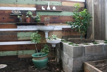 Gardening Ideas / Gardening Ideas that our participants can use for Corazón's gardening class -