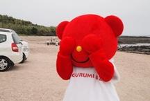 Bizbear  / Bizbears are image characters of KIGURUMI.BIZ Inc., an  original  kigurumi maker in Japan.