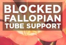 Blocked Fallopian Tube Support / Blocked fallopian tube support, articles and guides.