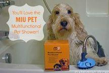 MIU PET Reviews / http://bit.ly/MIUPETShop