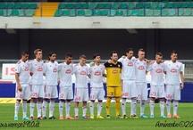 Varese Calcio 1910 sponsored by Temporary spa