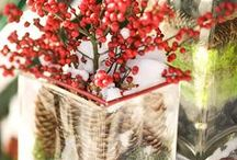 Christmas Table Decorations / All things 'Christmassey' for your dinner celebrations this Christmas