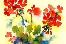 Geranium (watercolor)