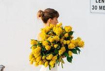 flora / Florals, florals, and more florals. Celebrating beautiful blooms.