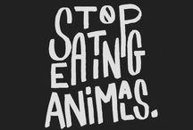Vegan Quotes & Facts