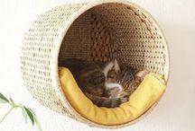 HOME - CAT FURNITURE