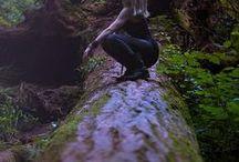 Scene . Forest - Forêt / Forest, trees scenes - Scènes arbres et forêts | Writing & Cinema inspiration |