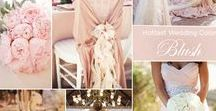 Wedding Themes / Fantastic Colour Themes for your Wedding