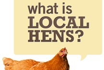 Local Hens