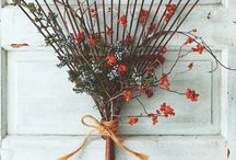 Fall decor  / by Jacqueline Lelli