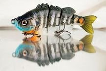 Fishing Lures / The best lures to catch that monster fish!