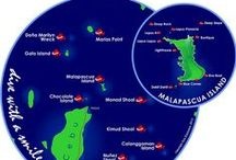 Dive Sites Malapascua / Dive Spots in Malapascua Philippines | Sea Explorers / Photos of Dives sites / Dive Spots, and sea creatures you can commonly find in Malapascua Philippines.
