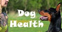 Dog Health / Tips and advice on dog health subjects including and dog skin issues, including warning signs to look out for and home remedies you can try.
