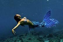 Mermaids / The magic world of mermaids