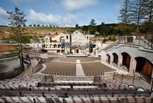 Mountain Winery Concerts